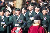 March Past, Remembrance Sunday at the Cenotaph 2016: A02 Royal Green Jackets Association. Cenotaph, Whitehall, London SW1, London, Greater London, United Kingdom, on 13 November 2016 at 12:38, image #16