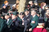 March Past, Remembrance Sunday at the Cenotaph 2016: A02 Royal Green Jackets Association. Cenotaph, Whitehall, London SW1, London, Greater London, United Kingdom, on 13 November 2016 at 12:38, image #25