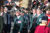 March Past, Remembrance Sunday at the Cenotaph 2016: A02 Royal Green Jackets Association. Cenotaph, Whitehall, London SW1, London, Greater London, United Kingdom, on 13 November 2016 at 12:38, image #28