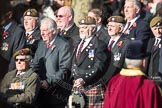 March Past, Remembrance Sunday at the Cenotaph 2016. Cenotaph, Whitehall, London SW1, London, Greater London, United Kingdom, on 13 November 2016 at 12:39, image #81
