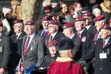 March Past, Remembrance Sunday at the Cenotaph 2016: A08 Guards Parachute Association. Cenotaph, Whitehall, London SW1, London, Greater London, United Kingdom, on 13 November 2016 at 12:39, image #87