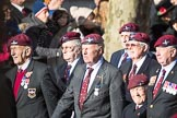 March Past, Remembrance Sunday at the Cenotaph 2016: A08 Guards Parachute Association. Cenotaph, Whitehall, London SW1, London, Greater London, United Kingdom, on 13 November 2016 at 12:39, image #88