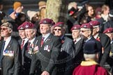 March Past, Remembrance Sunday at the Cenotaph 2016: A08 Guards Parachute Association. Cenotaph, Whitehall, London SW1, London, Greater London, United Kingdom, on 13 November 2016 at 12:39, image #92