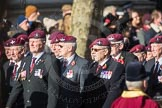 March Past, Remembrance Sunday at the Cenotaph 2016: A08 Guards Parachute Association. Cenotaph, Whitehall, London SW1, London, Greater London, United Kingdom, on 13 November 2016 at 12:39, image #93