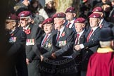 March Past, Remembrance Sunday at the Cenotaph 2016: A08 Guards Parachute Association. Cenotaph, Whitehall, London SW1, London, Greater London, United Kingdom, on 13 November 2016 at 12:39, image #95