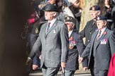 March Past, Remembrance Sunday at the Cenotaph 2016: A10 Royal Hampshire Regiment Comrades Association. Cenotaph, Whitehall, London SW1, London, Greater London, United Kingdom, on 13 November 2016 at 12:39, image #101