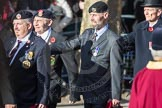 March Past, Remembrance Sunday at the Cenotaph 2016: A11 The Royal Hampshire Regimental Club. Cenotaph, Whitehall, London SW1, London, Greater London, United Kingdom, on 13 November 2016 at 12:40, image #108