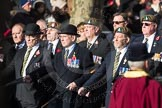 March Past, Remembrance Sunday at the Cenotaph 2016: A12 Green Howards Association. Cenotaph, Whitehall, London SW1, London, Greater London, United Kingdom, on 13 November 2016 at 12:40, image #113