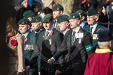 March Past, Remembrance Sunday at the Cenotaph 2016: A17 Rifles Regimental Association. Cenotaph, Whitehall, London SW1, London, Greater London, United Kingdom, on 13 November 2016 at 12:41, image #164