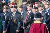 March Past, Remembrance Sunday at the Cenotaph 2016: A21 Fusiliers Association Lancashire. Cenotaph, Whitehall, London SW1, London, Greater London, United Kingdom, on 13 November 2016 at 12:41, image #186
