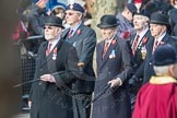 March Past, Remembrance Sunday at the Cenotaph 2016: A25 Royal Northumbaland Fusiliers All Ranks Club. Cenotaph, Whitehall, London SW1, London, Greater London, United Kingdom, on 13 November 2016 at 12:41, image #202