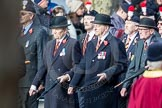 March Past, Remembrance Sunday at the Cenotaph 2016: A25 Royal Northumbaland Fusiliers All Ranks Club. Cenotaph, Whitehall, London SW1, London, Greater London, United Kingdom, on 13 November 2016 at 12:41, image #203