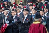 March Past, Remembrance Sunday at the Cenotaph 2016: A25 Royal Northumbaland Fusiliers All Ranks Club. Cenotaph, Whitehall, London SW1, London, Greater London, United Kingdom, on 13 November 2016 at 12:42, image #207