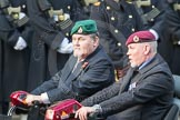 March Past, Remembrance Sunday at the Cenotaph 2016: A34 British Limbless Ex-Service Men's Association (Blesma). Cenotaph, Whitehall, London SW1, London, Greater London, United Kingdom, on 13 November 2016 at 12:43, image #240