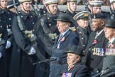 March Past, Remembrance Sunday at the Cenotaph 2016: B03 3rd Regiment Royal Horse Artillery Association. Cenotaph, Whitehall, London SW1, London, Greater London, United Kingdom, on 13 November 2016 at 12:45, image #343