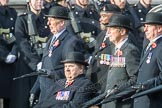 March Past, Remembrance Sunday at the Cenotaph 2016: B03 3rd Regiment Royal Horse Artillery Association. Cenotaph, Whitehall, London SW1, London, Greater London, United Kingdom, on 13 November 2016 at 12:45, image #344