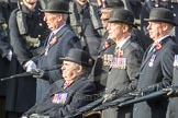 March Past, Remembrance Sunday at the Cenotaph 2016: B03 3rd Regiment Royal Horse Artillery Association. Cenotaph, Whitehall, London SW1, London, Greater London, United Kingdom, on 13 November 2016 at 12:45, image #345