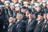 March Past, Remembrance Sunday at the Cenotaph 2016: B03 3rd Regiment Royal Horse Artillery Association. Cenotaph, Whitehall, London SW1, London, Greater London, United Kingdom, on 13 November 2016 at 12:45, image #362