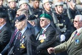 March Past, Remembrance Sunday at the Cenotaph 2016: B04 Royal Artillery Association. Cenotaph, Whitehall, London SW1, London, Greater London, United Kingdom, on 13 November 2016 at 12:46, image #370