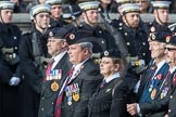 March Past, Remembrance Sunday at the Cenotaph 2016: B05 The Royal Engineers Association. Cenotaph, Whitehall, London SW1, London, Greater London, United Kingdom, on 13 November 2016 at 12:46, image #375