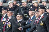 March Past, Remembrance Sunday at the Cenotaph 2016: B05 The Royal Engineers Association. Cenotaph, Whitehall, London SW1, London, Greater London, United Kingdom, on 13 November 2016 at 12:46, image #376