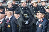 March Past, Remembrance Sunday at the Cenotaph 2016: B05 The Royal Engineers Association. Cenotaph, Whitehall, London SW1, London, Greater London, United Kingdom, on 13 November 2016 at 12:46, image #380