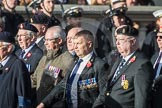 March Past, Remembrance Sunday at the Cenotaph 2016: B10 Royal Army Ordnance Corps Association (RAOC). Cenotaph, Whitehall, London SW1, London, Greater London, United Kingdom, on 13 November 2016 at 12:47, image #460
