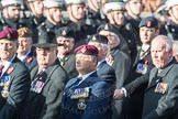 March Past, Remembrance Sunday at the Cenotaph 2016: B12 Royal Pioneer Corps Association. Cenotaph, Whitehall, London SW1, London, Greater London, United Kingdom, on 13 November 2016 at 12:47, image #473
