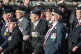 March Past, Remembrance Sunday at the Cenotaph 2016: B13 Royal Army Medical Corps Association. Cenotaph, Whitehall, London SW1, London, Greater London, United Kingdom, on 13 November 2016 at 12:48, image #513
