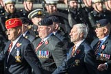 March Past, Remembrance Sunday at the Cenotaph 2016: B25 JLR RAC Old Boys' Association. Cenotaph, Whitehall, London SW1, London, Greater London, United Kingdom, on 13 November 2016 at 12:50, image #662