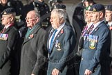 March Past, Remembrance Sunday at the Cenotaph 2016: B30 Allied command in Europe mobile force AMF(L). Cenotaph, Whitehall, London SW1, London, Greater London, United Kingdom, on 13 November 2016 at 12:51, image #711