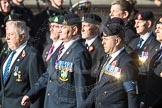 March Past, Remembrance Sunday at the Cenotaph 2016: B30 Allied command in Europe mobile force AMF(L). Cenotaph, Whitehall, London SW1, London, Greater London, United Kingdom, on 13 November 2016 at 12:51, image #712