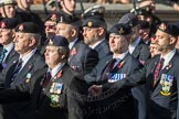 March Past, Remembrance Sunday at the Cenotaph 2016: B30 Allied command in Europe mobile force AMF(L). Cenotaph, Whitehall, London SW1, London, Greater London, United Kingdom, on 13 November 2016 at 12:51, image #717