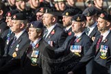 March Past, Remembrance Sunday at the Cenotaph 2016: B30 Allied command in Europe mobile force AMF(L). Cenotaph, Whitehall, London SW1, London, Greater London, United Kingdom, on 13 November 2016 at 12:51, image #718