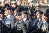 March Past, Remembrance Sunday at the Cenotaph 2016: B30 Allied command in Europe mobile force AMF(L). Cenotaph, Whitehall, London SW1, London, Greater London, United Kingdom, on 13 November 2016 at 12:51, image #720