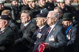 March Past, Remembrance Sunday at the Cenotaph 2016: B31 Household Cavalry. Cenotaph, Whitehall, London SW1, London, Greater London, United Kingdom, on 13 November 2016 at 12:51, image #731