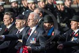 March Past, Remembrance Sunday at the Cenotaph 2016: B31 Household Cavalry. Cenotaph, Whitehall, London SW1, London, Greater London, United Kingdom, on 13 November 2016 at 12:51, image #732