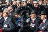 March Past, Remembrance Sunday at the Cenotaph 2016: B31 Household Cavalry. Cenotaph, Whitehall, London SW1, London, Greater London, United Kingdom, on 13 November 2016 at 12:51, image #733