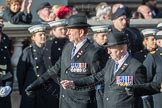 March Past, Remembrance Sunday at the Cenotaph 2016: C01 Royal Air Forces Association. Cenotaph, Whitehall, London SW1, London, Greater London, United Kingdom, on 13 November 2016 at 12:51, image #735