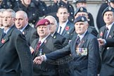 March Past, Remembrance Sunday at the Cenotaph 2016: C03 RAF Survival Equipment Assoc (RAFSE, Squippers). Cenotaph, Whitehall, London SW1, London, Greater London, United Kingdom, on 13 November 2016 at 12:52, image #812