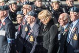 March Past, Remembrance Sunday at the Cenotaph 2016: C13 Royal Air Force Mountain Rescue Association. Cenotaph, Whitehall, London SW1, London, Greater London, United Kingdom, on 13 November 2016 at 12:54, image #889