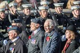 March Past, Remembrance Sunday at the Cenotaph 2016: C14 Units of the Far East Air Force. Cenotaph, Whitehall, London SW1, London, Greater London, United Kingdom, on 13 November 2016 at 12:54, image #899