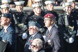 March Past, Remembrance Sunday at the Cenotaph 2016: C17 Royal Air Force Movements and Mobile Air Movements Squadron Association (RAF MAMS). Cenotaph, Whitehall, London SW1, London, Greater London, United Kingdom, on 13 November 2016 at 12:54, image #923