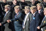 March Past, Remembrance Sunday at the Cenotaph 2016: C18 Royal Air Force Masirah & Salalah Veterans Association. Cenotaph, Whitehall, London SW1, London, Greater London, United Kingdom, on 13 November 2016 at 12:54, image #926