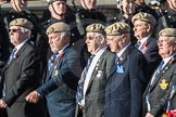 March Past, Remembrance Sunday at the Cenotaph 2016: C18 Royal Air Force Masirah & Salalah Veterans Association. Cenotaph, Whitehall, London SW1, London, Greater London, United Kingdom, on 13 November 2016 at 12:54, image #927