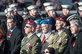 March Past, Remembrance Sunday at the Cenotaph 2016: C28 Czechoslovak Legionaries Association. Cenotaph, Whitehall, London SW1, London, Greater London, United Kingdom, on 13 November 2016 at 12:55, image #1038
