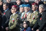 March Past, Remembrance Sunday at the Cenotaph 2016: C28 Czechoslovak Legionaries Association. Cenotaph, Whitehall, London SW1, London, Greater London, United Kingdom, on 13 November 2016 at 12:55, image #1040