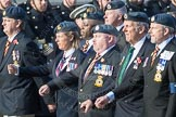 March Past, Remembrance Sunday at the Cenotaph 2016: C29 Harrier Force Association. Cenotaph, Whitehall, London SW1, London, Greater London, United Kingdom, on 13 November 2016 at 12:56, image #1045