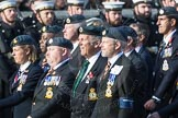 March Past, Remembrance Sunday at the Cenotaph 2016: C29 Harrier Force Association. Cenotaph, Whitehall, London SW1, London, Greater London, United Kingdom, on 13 November 2016 at 12:56, image #1046