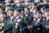 March Past, Remembrance Sunday at the Cenotaph 2016: C29 Harrier Force Association. Cenotaph, Whitehall, London SW1, London, Greater London, United Kingdom, on 13 November 2016 at 12:56, image #1047
